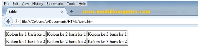 contoh tampilan tabel html di browser