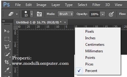 step3 memunculkan percent di photosop