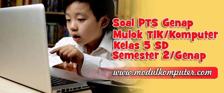 Soal PTS TIK/Mulok Komputer Kelas 5 SD Semester 2